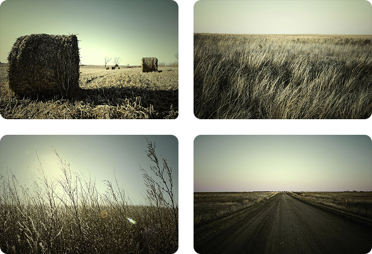 Prairie Stock Photography