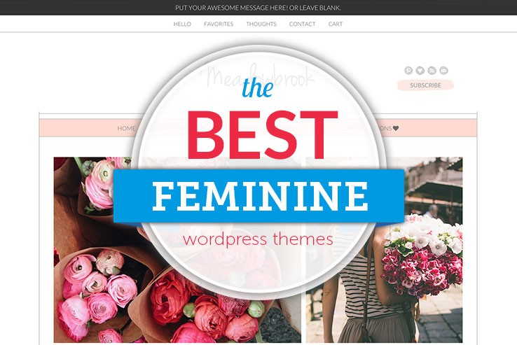 75+ Beautiful and Feminine WordPress Themes 2017