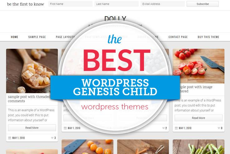 WordPress Genesis Child Themes