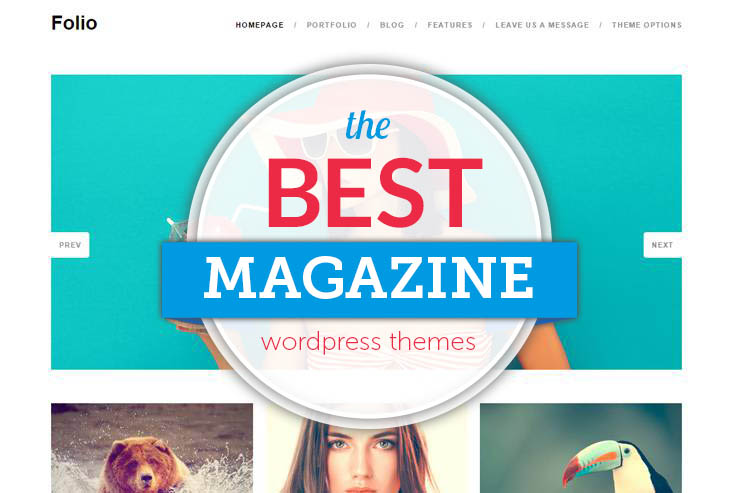 Best WP Mag Themes
